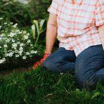 Muggen uit de tuin en boven het gras verjagen