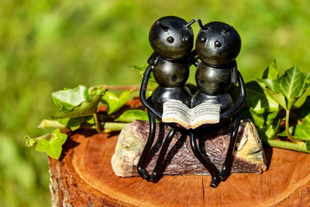 vliegende mieren bestrijden