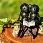 Hoe moet je vliegende mieren bestrijden?