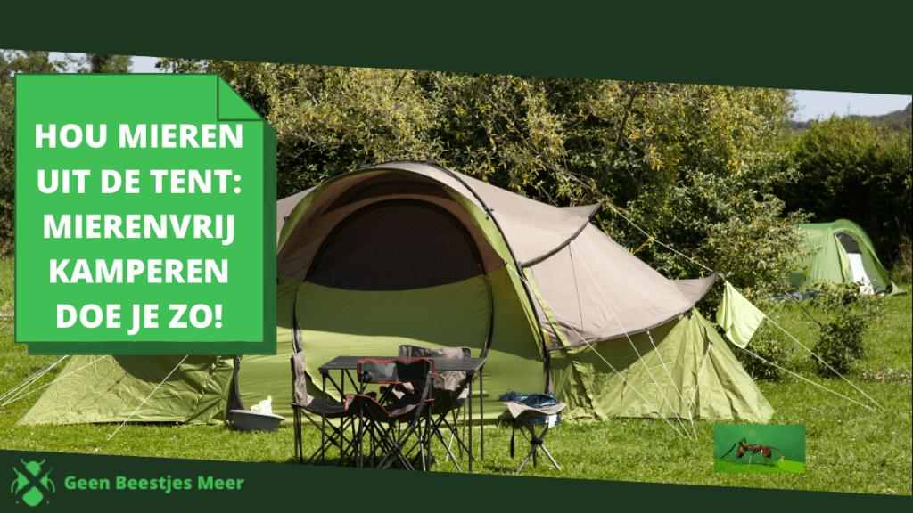 Hou mieren uit de tent_ mierenvrij kamperen doe je zo!
