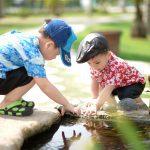 Is een mierenlokdoos of mierenpoeder veilig voor kinderen?