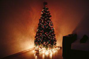 In deze mooie kerstboom kunnen nooit teken voorkomen, dat is onmogelijk!