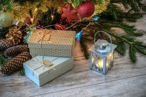 Laat je kerst niet door insecten in de kerstboom verpesten, dat is nergens voor nodig!