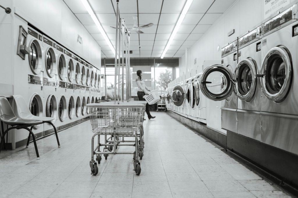 wasmachine vlooien en vlooieneitjes