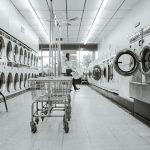Kan de wasmachine vlooien en vlooieneitjes doden?