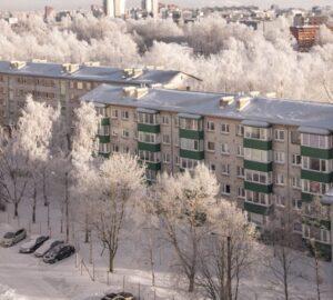 Foto van huizen en bomen in de winter