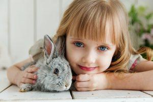 De grootste besmettingsbron van vlooien zijn huisdieren, maar dat wil niet zeggen dat mensen zonder huisdieren geen vlooien in huis kunnen krijgen.