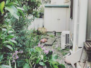 Foto van een rommelige tuin