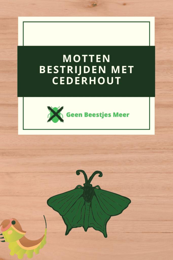 Pinterest Motten bestrijden met cederhout