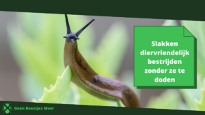 slakken diervriendelijk bestrijden