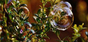 slakken in buxus bestrijden