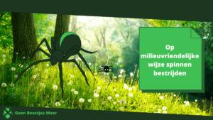 Op milieuvriendelijke wijze spinnen bestrijden