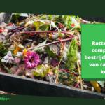 Ratten in een composthoop bestrijden: gids om van ratten af te komen