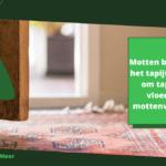 Motten bestrijden in het tapijt: 4 stappen om tapijten en vloerkleden mottenvrij houden