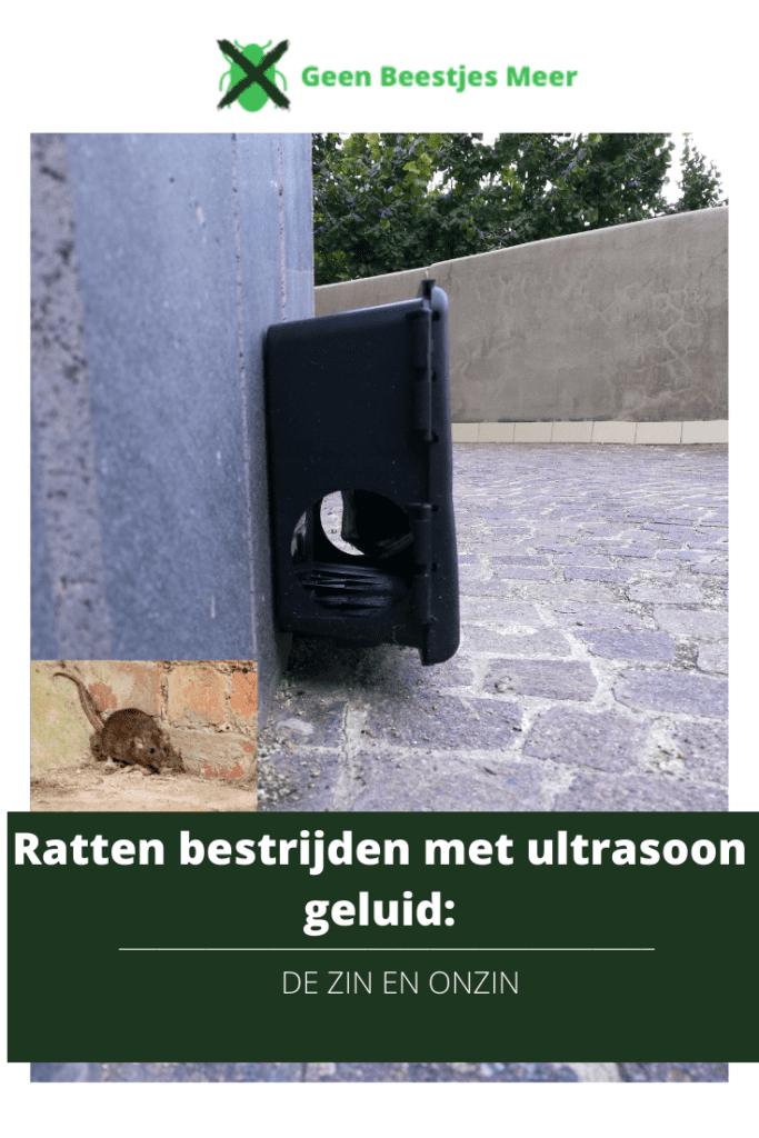 Pinterest Ratten bestrijden met ultrasoon geluid