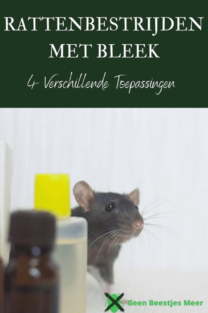 pinterest Ratten bestrijden met bleek
