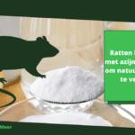 Ratten bestrijden met azijn - 4 stappen om natuurlijk ratten te verjagen
