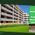 Muizen bestrijden in een flat: 5 stappen naar een appartement zonder muizen