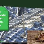 Muizen bestrijden onder dakpannen: Gids tegen muizen