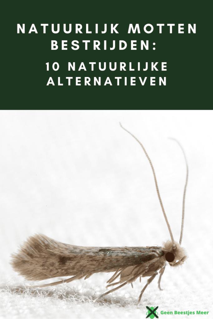 pinterest Natuurlijk motten bestrijden_ 10 natuurlijke alternatieven