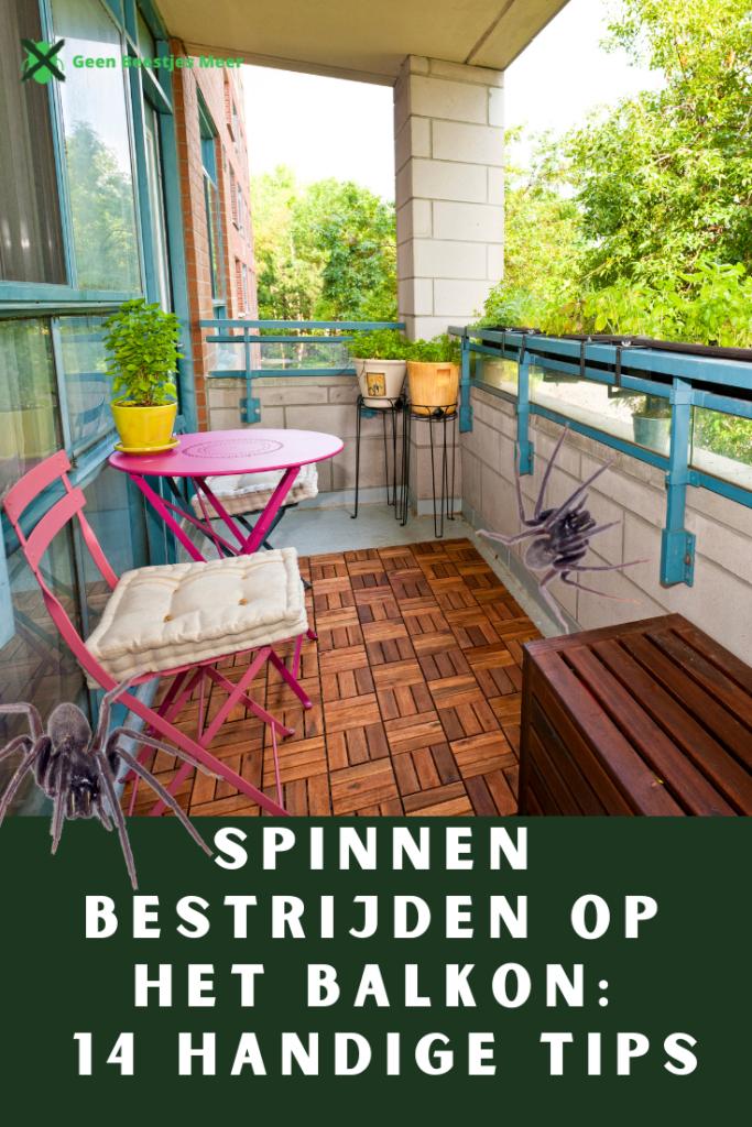 Pinterest Spinnen bestrijden op het balkon_ 14 handige tips