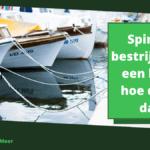 Spinnen bestrijden op een boot: hoe doe je dat?