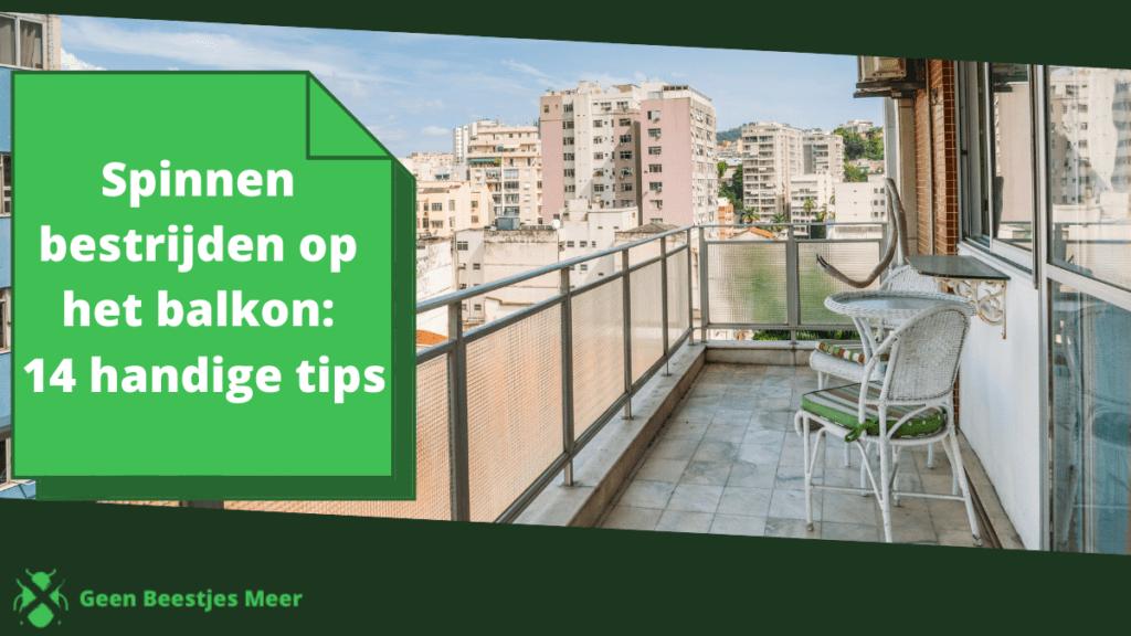 Spinnen bestrijden op het balkon_ 14 handige tips