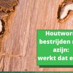 Houtworm bestrijden met azijn: werkt dat echt?