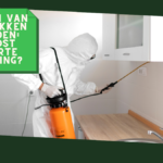 De kosten van kakkerlakken bestrijden: wat kost ongedierte bestrijding?