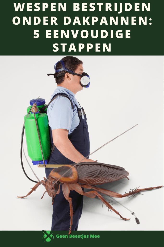 Pinterest De kosten van kakkerlakken bestrijden wat kost ongedierte bestrijding